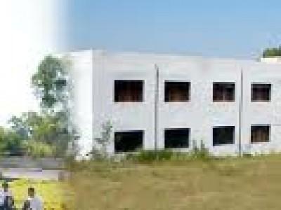 Phoenix International Business School (PIBS)